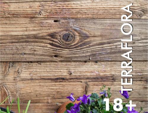 Nuevo catálogo Casa y jardín 18+